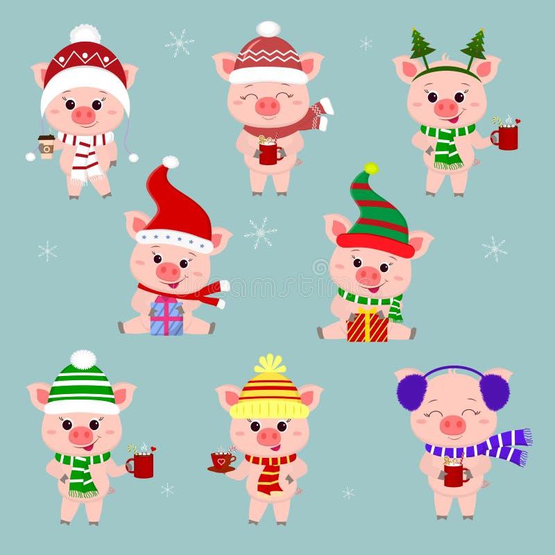 Set osiem świni w różnych kapeluszach i szaliku Trzyma filiżankę różnorodni gorący napoje i prezent boże narodzenie nowy rok szcz royalty ilustracja