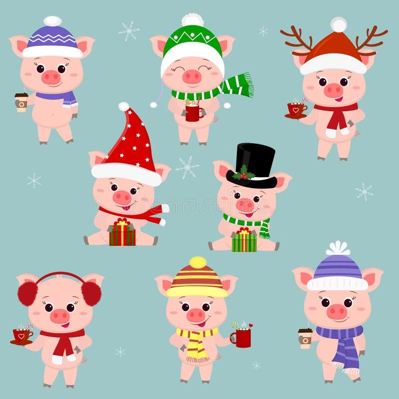Set osiem świni w różnych kapeluszach i szaliku Trzyma filiżankę różnorodni gorący napoje i prezent boże narodzenie nowy rok szcz ilustracja wektor