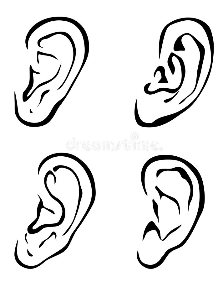 Vector ears. Vector set of 4 outline ears. Body part . Earrings . Ear . Ears . Rumor . Ears silhouette. Ears sketch royalty free illustration