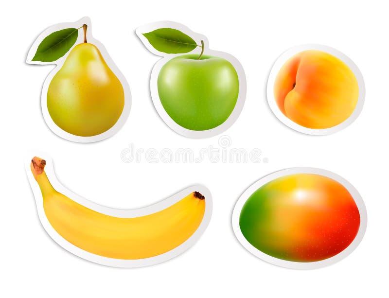 Set płascy owocowi majchery. ilustracja wektor