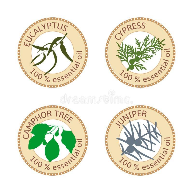 Set płaskie istotnego oleju etykietki procent 100 Eukaliptus, cyprys, kamforowy drzewo, jałowiec ilustracji