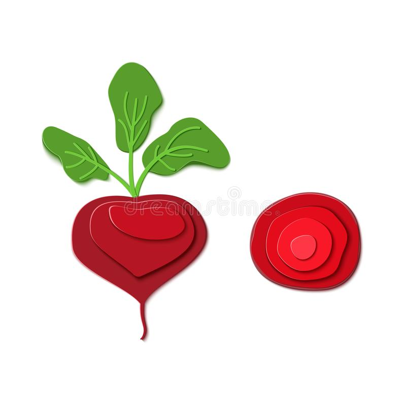 Set of paper cut red beet. Vector paper craft design in the form of ripe beetroot whole and slice. Vector illustration. Paper applique art style root vegetable stock illustration