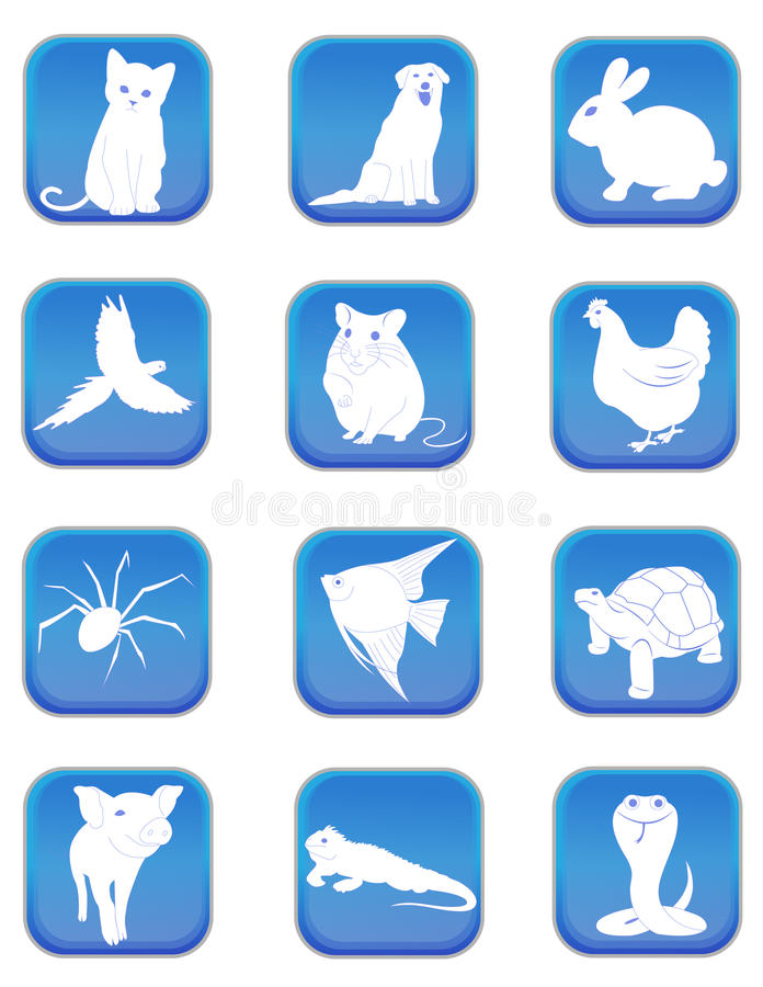 Download Pet icons stock vector. Image of mammal, fowl, design - 30314059