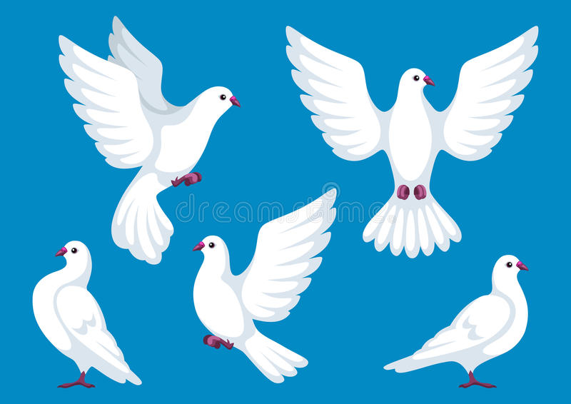 Set pięć białych gołąbek Piękni gołębie wiara i miłość symbol ilustracja wektor