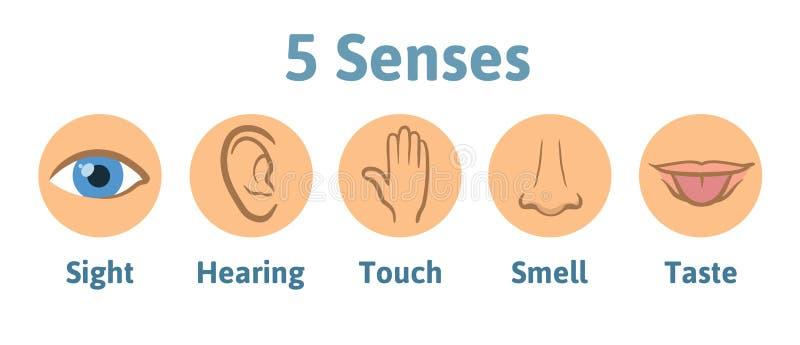 Set pięć sensów ludzka ikona: wzrok, przesłuchanie, odór, przesłuchanie, dotyk, smak Oko, ucho, ręka, nos i usta z jęzorem, royalty ilustracja