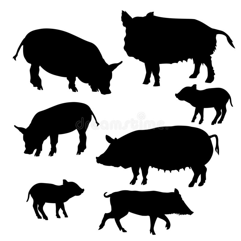 Set of pigs silhouettes vector illustration