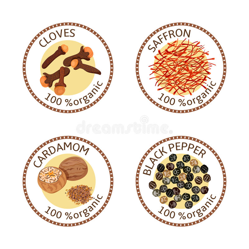 Set pikantność etykietki 100 organicznie Kolekcja royalty ilustracja
