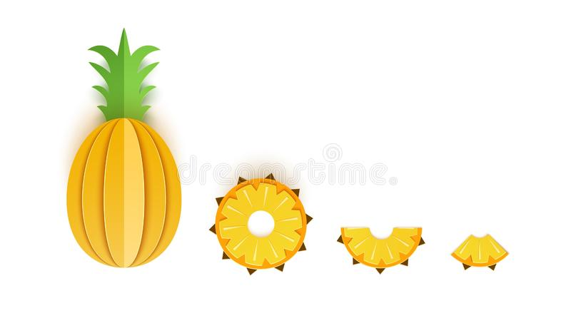 Set of pineapple sliced paper citrus fruit sliced whole, triangular and round slices, design for any purpose. Summer stock illustration