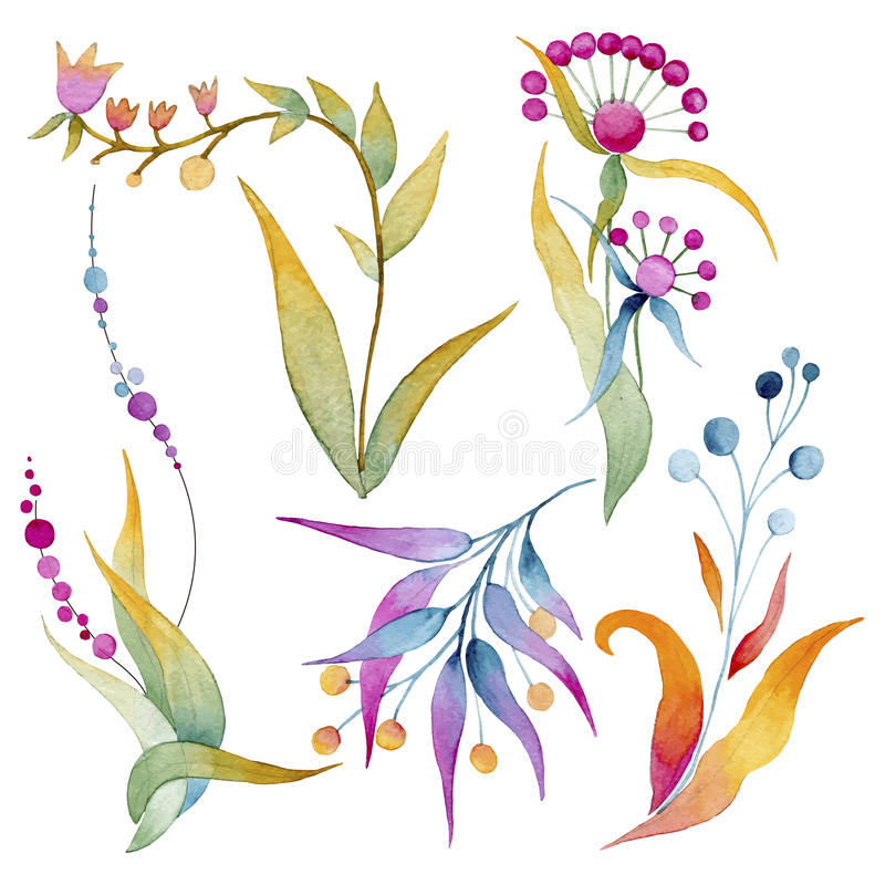 Set of plants and flowers in watercolors vector illustration