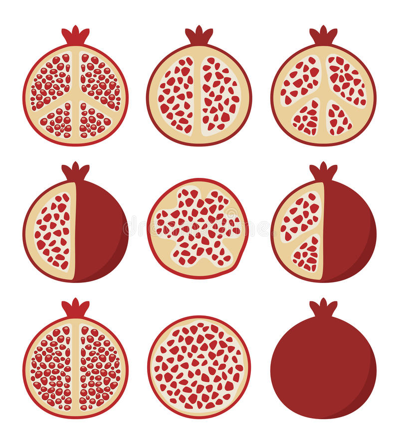 Set of pomegranate cuts, vector royalty free illustration
