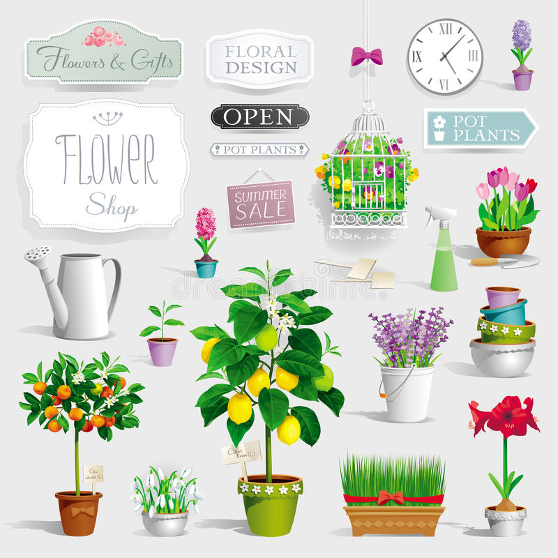 Set of the pot plants and garden tools vector illustration