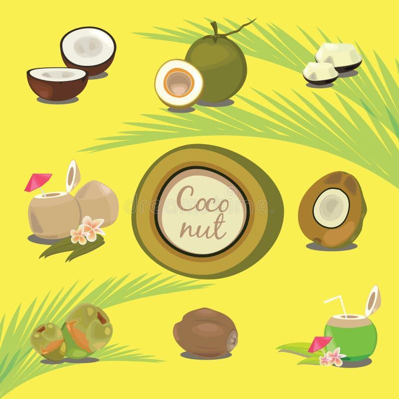 Set produkty Kokosowy Tropikalnej owoc opis ilustracja wektor