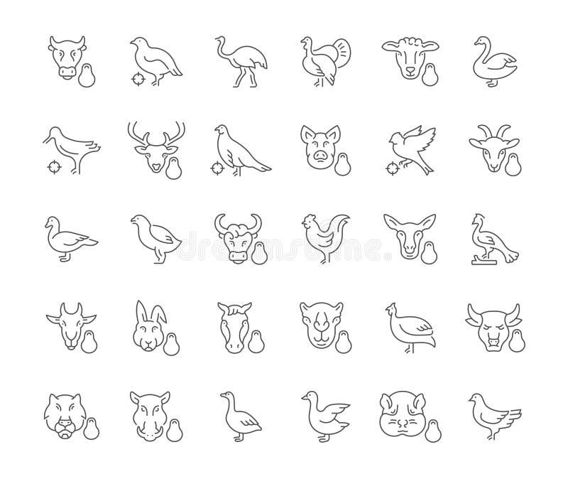 Set Proste ikony mięso i drób royalty ilustracja
