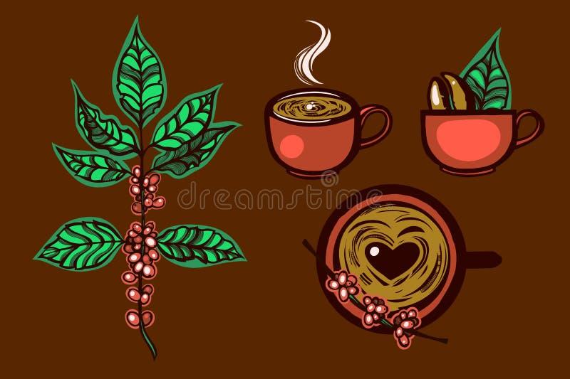 Set przylepia etykietkę filiżankę aromatyczna kawa, kawowa roślina logo ręka patroszona ilustracji