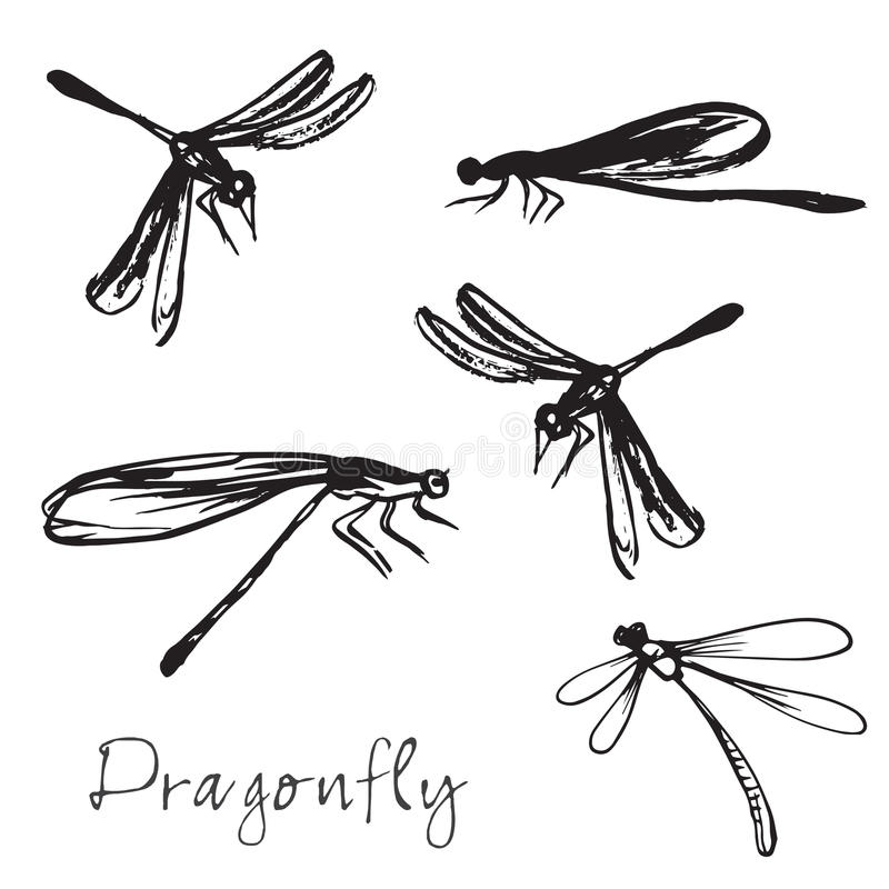 Set różna ręka rysujący dragonflies ilustracji