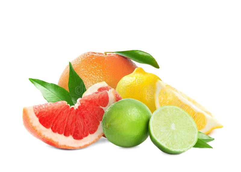 Set różne soczyste cytrus owoc na bielu zdjęcia stock