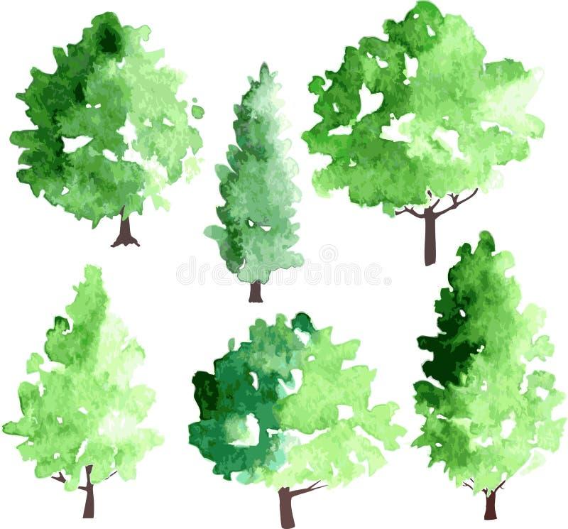 Set różni deciduous drzewa ilustracja wektor
