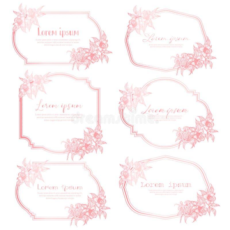 Set ręka rysująca kwiecista rama Geometryczna rama z ręka rysującym kwiatem Botaniczny sk?ad Dekoracyjny element dla ślubnej kart ilustracja wektor