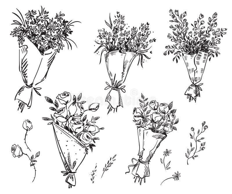 Set ręka rysujący bukiety, wektorowy nakreślenie royalty ilustracja