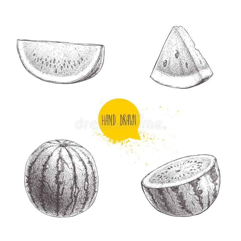 Set ręka rysujący nakreślenie stylu arbuzy i arbuzów plasterki Rocznika projekta owoc Eco lata jedzenia ilustracje ilustracji