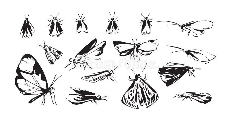 Set ręka rysujący stylizowani insekty Nakreślenie stylowa wektorowa ilustracja ćma sylwetki Czerń odizolowywający na białym tle ilustracja wektor