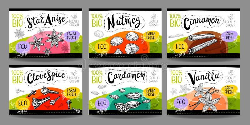 Set ręki rysować jedzenie etykietki, pikantność etykietki, owocowe etykietki, vege ilustracja wektor