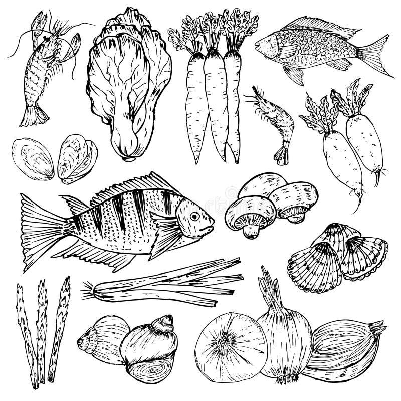 Set r?ka rysuj?ca ?ywno?? organiczna Organicznie ziele, pikantność i owoce morza, Zdrowi karmowi rysunki ustawiający elementy dla ilustracja wektor