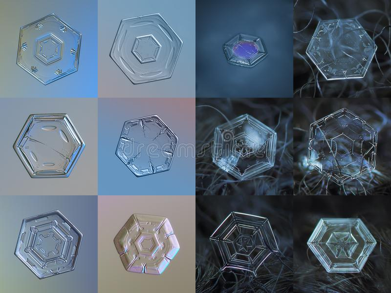 Set of 12 real snowflake photos. Simple hexagonal plate snow crystals. 6 snowflakes on the left side captured at glass with LED back light, 6 crystals on right royalty free stock photography