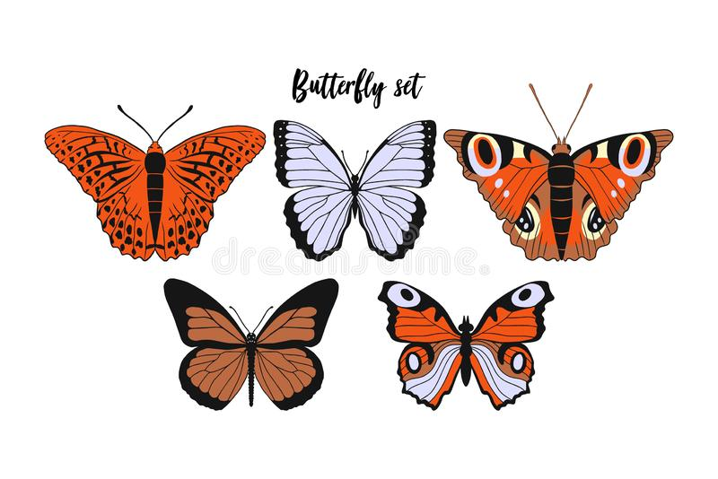 Set of realistic flat cartoon vector different butterflies on white background: monarch butterfly, Argynnis paphia, also stock illustration