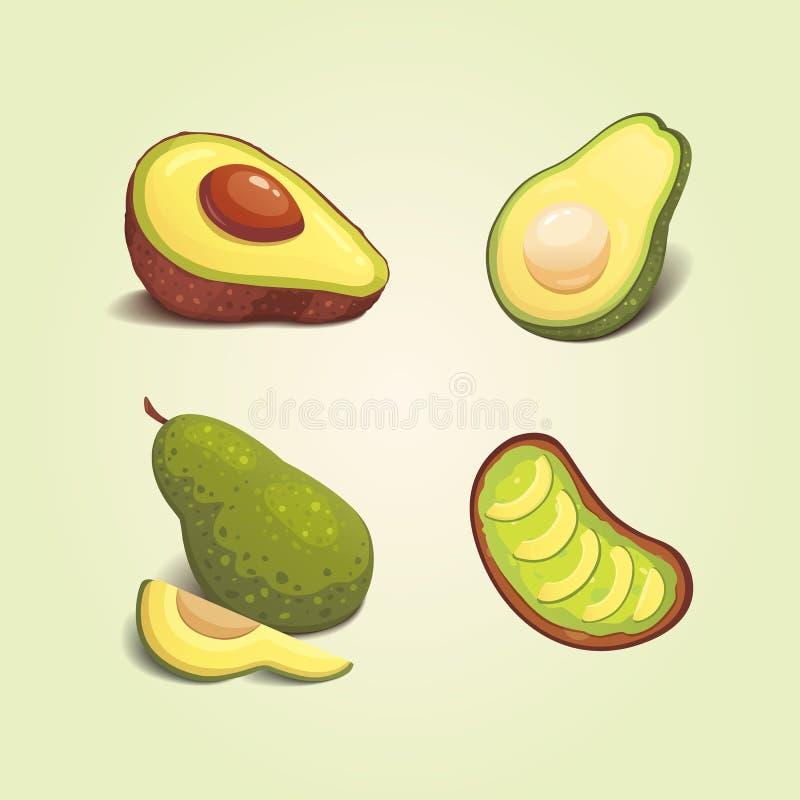 Set realistic fresh avocado fruit. Slice and whole avocados. Vegan food vector illustration in cartoon style. Set realistic fresh avocado fruit. Slice and whole royalty free illustration