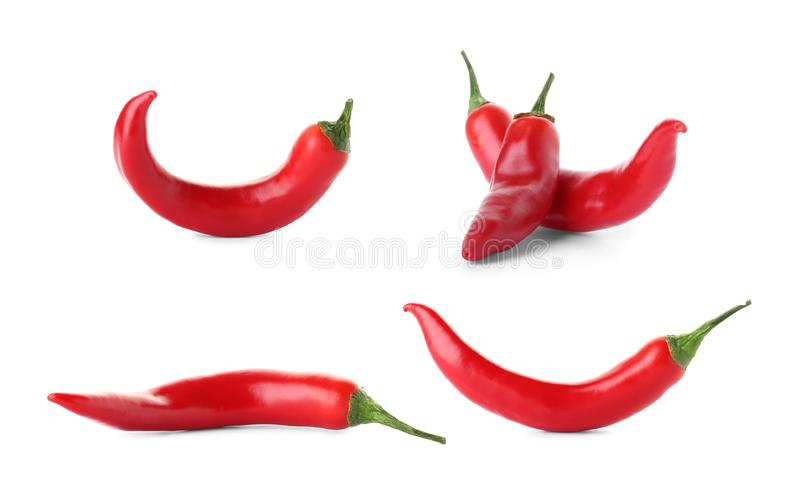 Set of red chili peppers stock photos
