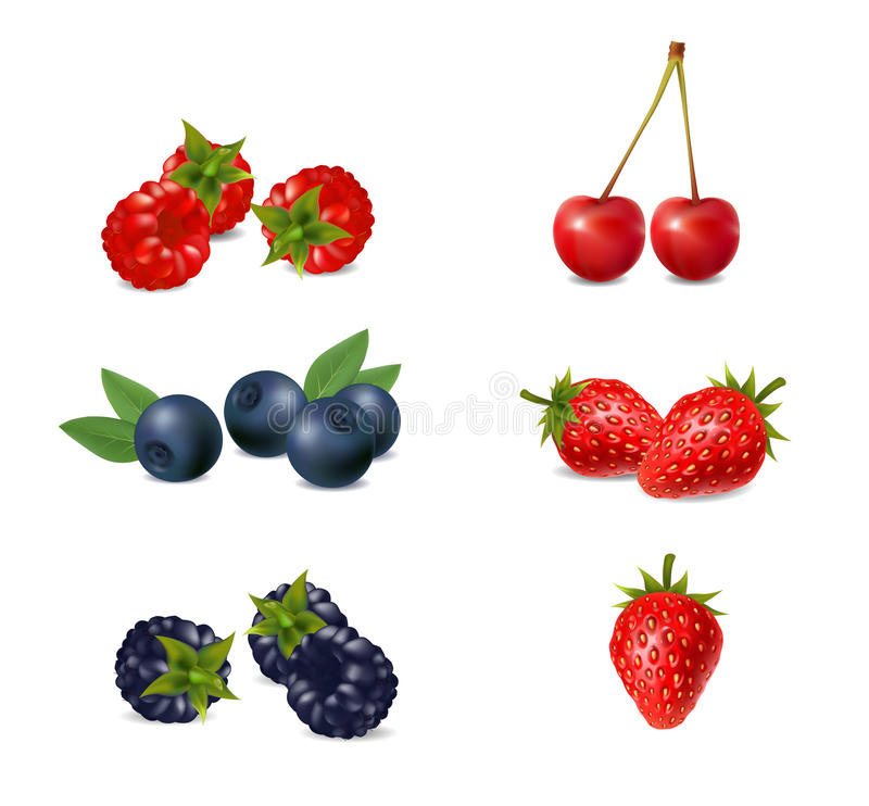 Set of ripe berries on a white background royalty free illustration