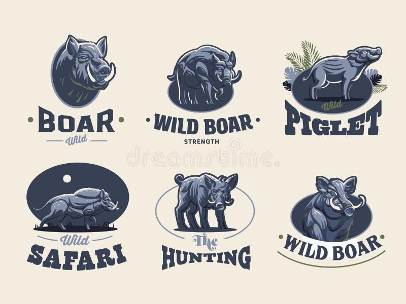 Set rocznika dzikiego knura emblematy ilustracja wektor