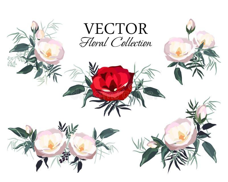 Set rocznika kwiecisty wektorowy bukiet peonie i ogród kwitnie royalty ilustracja