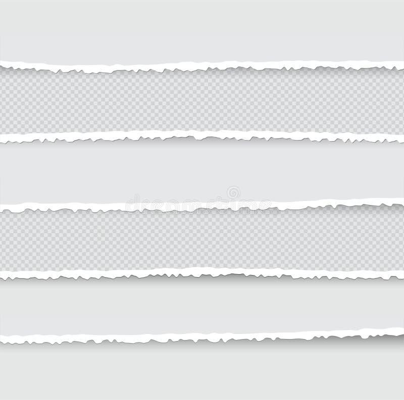 Set Rozdzierający i Drzejący Papierowi lampasy Tekstura papier z Uszkadzającą krawędzią Odizolowywającą na Przejrzystym tle równi royalty ilustracja