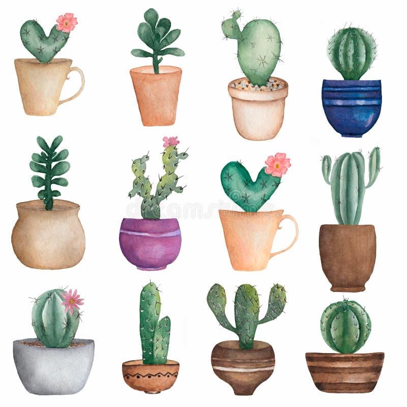 Set rysujący do domu akwareli ręka zasadza kaktusy w garnkach kwiat kaktusa z ogniska wybranych phpto up royalty ilustracja