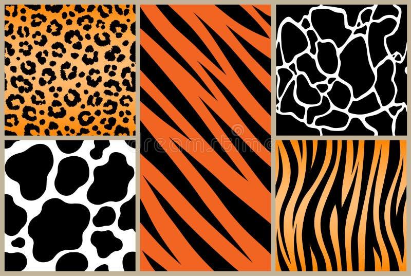 Set safari jungle animal fur stripe animals bengal tiger giraffe texture pattern white black orange vector illustration