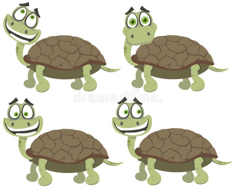 Set Schildkröten