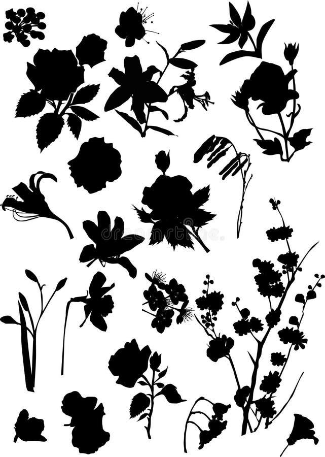 Set schwarze Blumenschattenbilder vektor abbildung