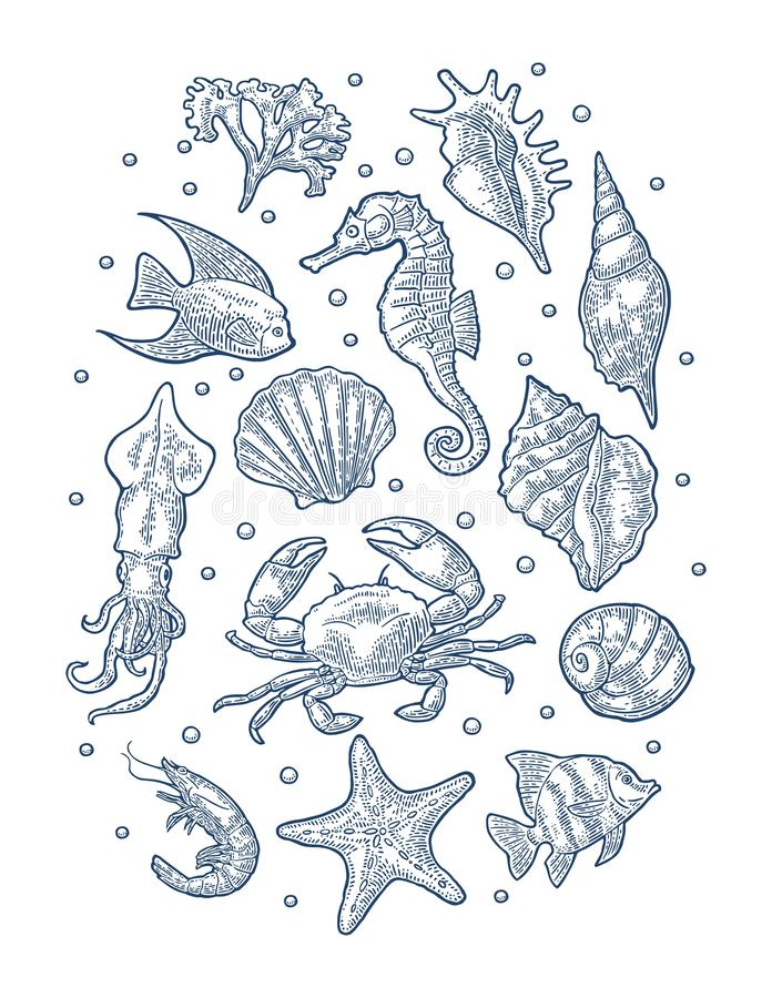 Set sea animal. Vector monochrome engraving vintage illustrations isolated on white royalty free illustration