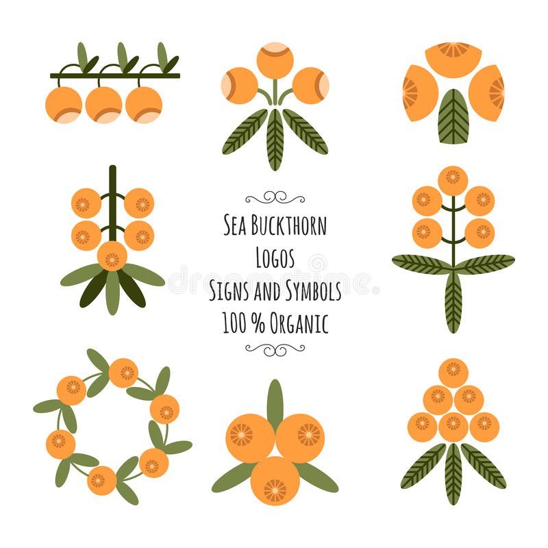 Set Of The Sea Buckthorn Logos Signs And Symbols For Natural