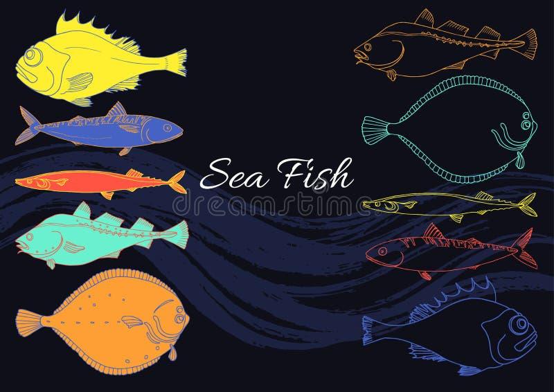 Set of sea fish on a black background. Perch, cod, mackerel, flounder, saira. Vector color doodle. stock illustration