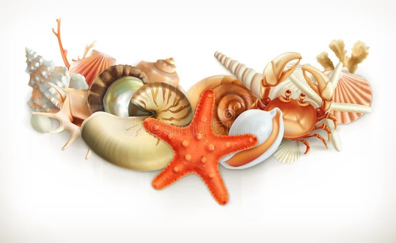 Set seashells ilustracyjni ilustracji