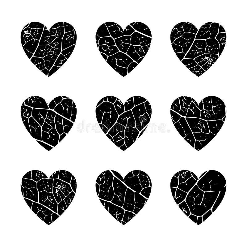 Set 9 serc z teksturą jarzynowe liść żyły ilustracji