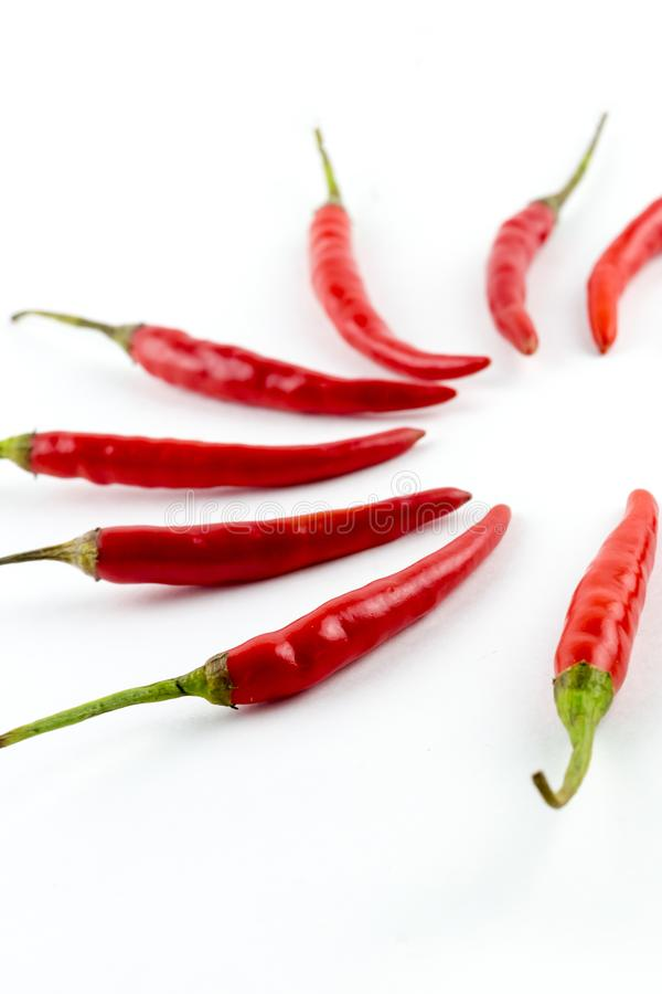 Set of sharp red chili peppers paprika part of a circle on a white background focus on the front row royalty free stock image