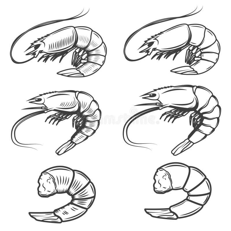 Set of shrimps icons isolated on white background. Seafood. Design elements for logo, label, emblem, sign, brand mark. royalty free illustration