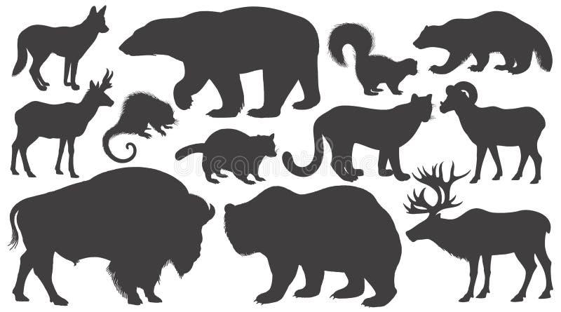 Set of silhouettes animals of North America. Black silhouettes animals of North America on white background set. Vector illustration art royalty free illustration