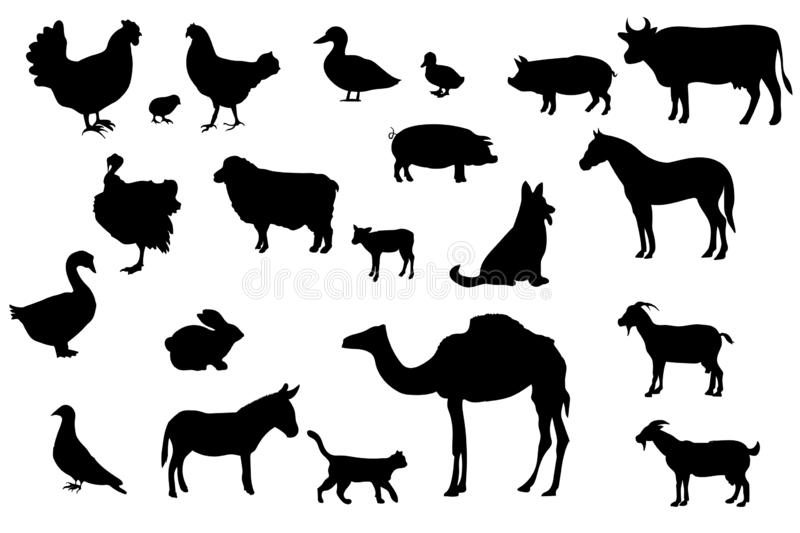 Set of Silhouettes of Farm and Domestic Animals, art vector design. Isolated stock illustration