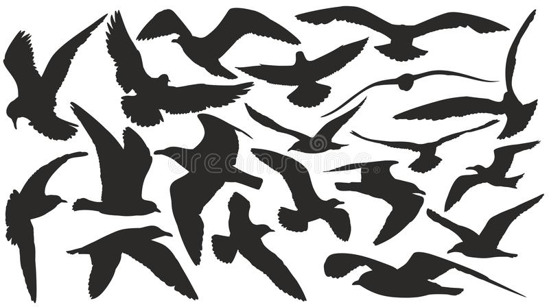 Set of silhouettes of seagulls. royalty free illustration