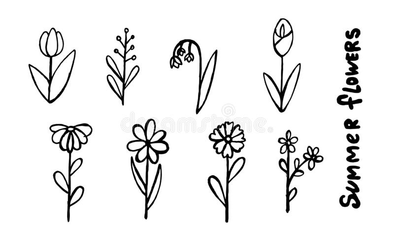 Drawings Flower Simple Stock Illustrations 303 Drawings Flower Simple Stock Illustrations Vectors Clipart Dreamstime
